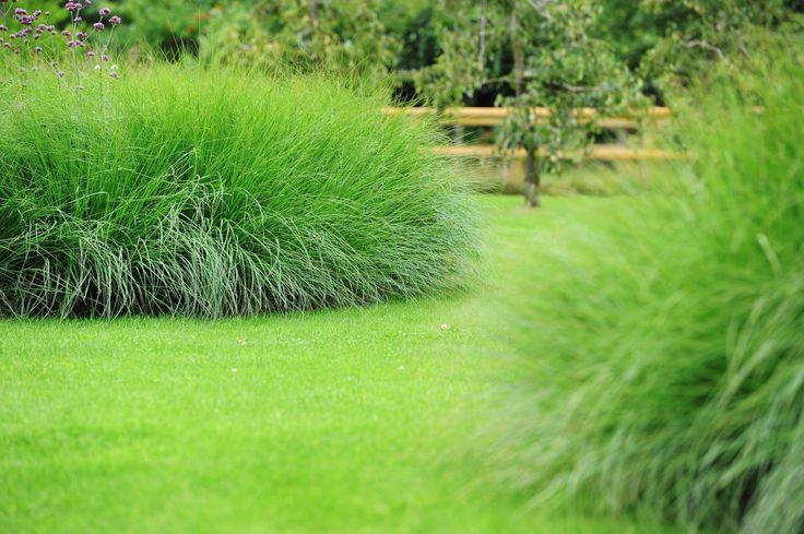 grassen landelijke tuin. Hendriks Hoveniers Didam