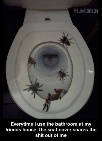 Scariest toilet seat cover ever