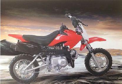 "Kymoto 50cc Dirt Bike - 4-Stroke Engine - ""Compare to Honda"""