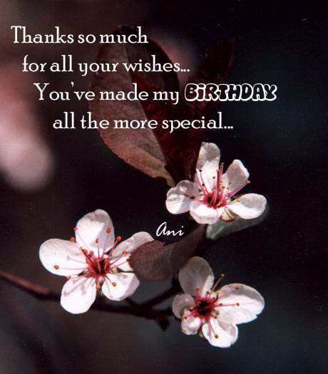 Thank you all for your birthday wishes