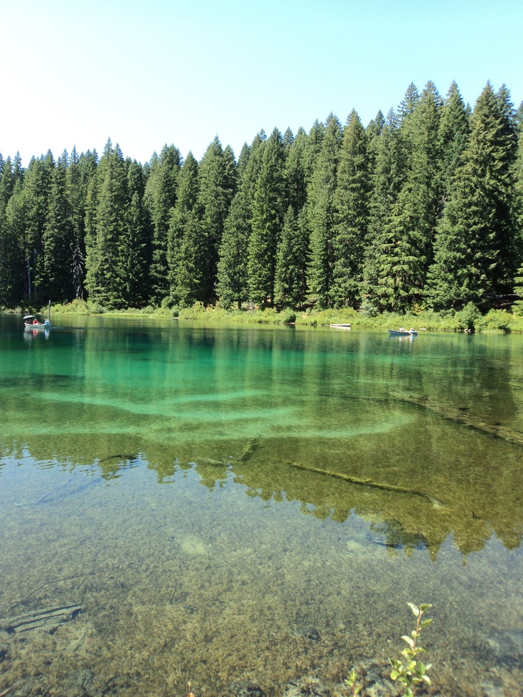 Clear lake oregon gardening birds bees pinterest for Clear lake fishing