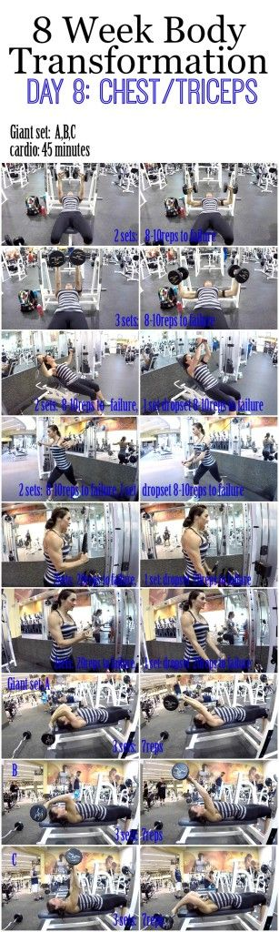 8 Week Body Transformation: Day 8 Chest and Triceps