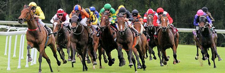 Gosford Racecourse.   See more race courses at http://www.racingfuture.com/content/horse-racing-venues-clubs-around-world
