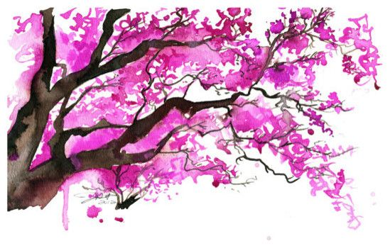 Watercolor Japanese Cherry Blossom Tree By Jessica Durrant