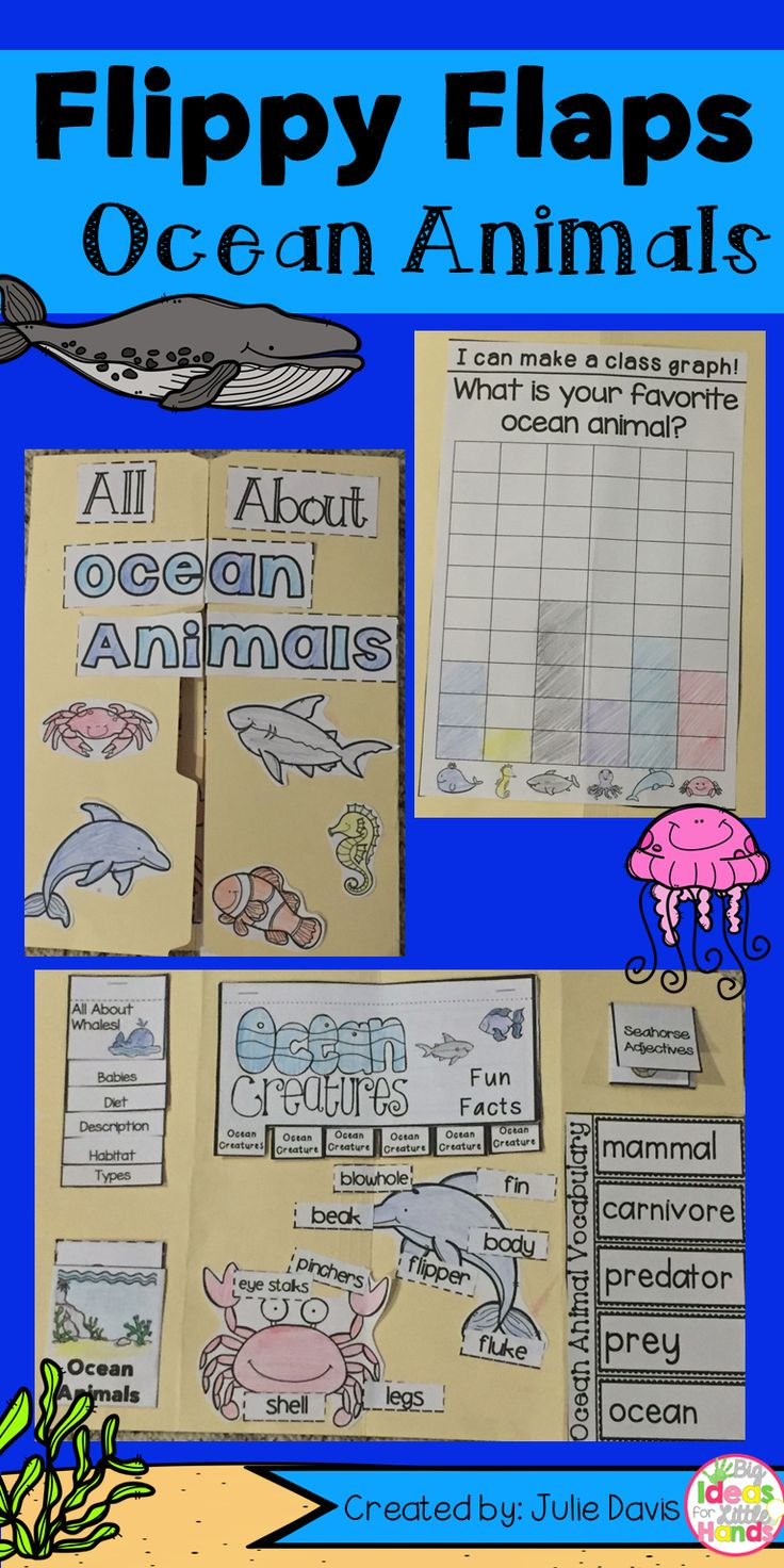 Ocean Animals Flippy Flaps!  This is a great way to get your students learning about Ocean Animals in a fun hands-on interactive way! Your students will be engaged and learn about whales, seahorses, crabs, dolphins, and sharks! in many different ways!  Activities included:  - All About Sharks - Label the Shark - Sharks can/have/eat - Shark Adjectives - Sharks KWL - All About Whales - Label the Whale - Whales can/have/eat - Whales Adjectives - Whale KWL - All About Crabs - Label the Crab…