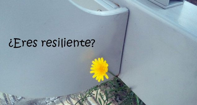 Resiliente?