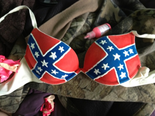 Ain't nothing like a rebel flag bra. ;)