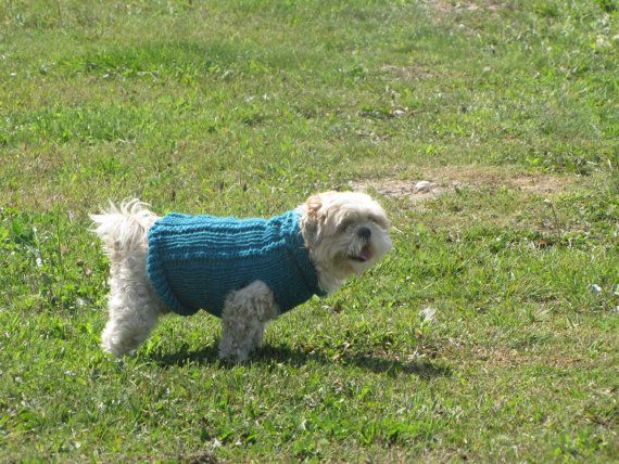 blue reflective dog sweater size small