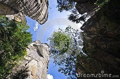 Adrspach Teplice Rock Town in Czech Republic. Upward view of tall sandstone…