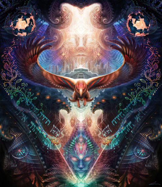 Inner Cosmos                                                                                                                                                                                 More
