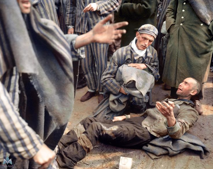 22 best auschwitz in color images on Pinterest | Colors, Colour and ...