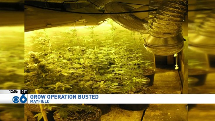 MAYFIELD, NY (WRGB)---The Fulton County Sheriff's Office has arrested 48-year-old Richard Baker on several charges, including marijuana possession. On December 10, a Sheriff's Deputy was a tax notice to an address on Route 30, Mayfield. The Deputy smelled