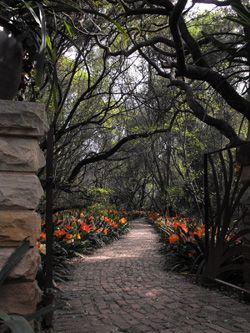 13 must-see botanical gardens: Beyond U.S.: Bricks Pathways, Sisulu, Organic Farming, Bricks Paths, Gardens Paths, Garden Paths, Arches Trees, National Botanical, Botanical Gardens