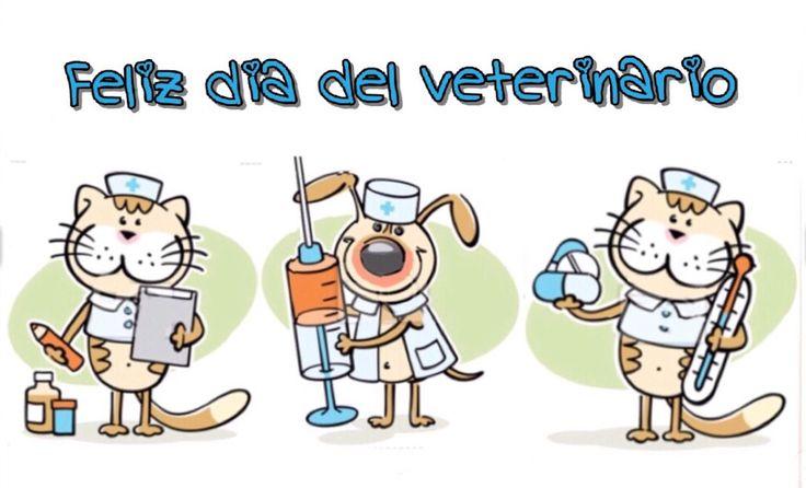 Feliz día del veterinario, perro y gato
