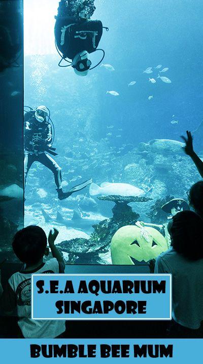 Celebrating Halloween at SEA Aquarium (Resorts World Sentosa, Singapore) - Bumble Bee Mum http://bumblebeemum.net/2015/10/23/s-e-a-aquarium-singapore-resorts-world-sentosa-spooky-seas/