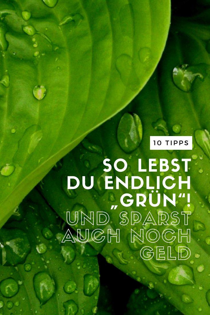"""Du willst endlich bewusster und ökologischer leben? Dann leg doch endlich los und bring Bewegung in dein Leben. Hier mal 10 Ideen, mit denen du viel """"grüner"""" lebst."""