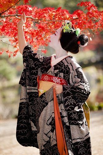 Seishouen of Higashi-Honganji with Maiko Mameyuri 豆ゆり