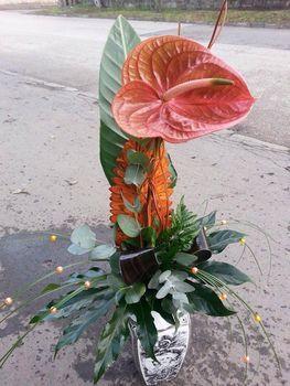 Csokor flamingóval, a férfiasságot jelképező virággal