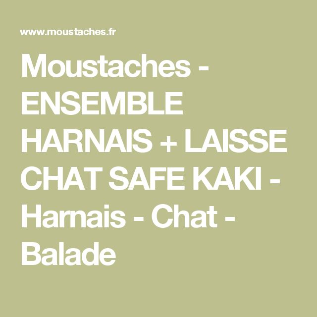 Moustaches - ENSEMBLE HARNAIS + LAISSE CHAT SAFE KAKI - Harnais - Chat - Balade