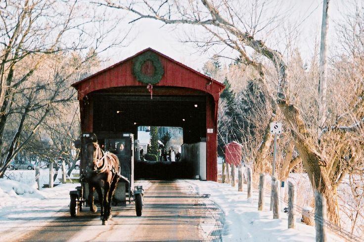 Mennonite Buggy & the Kissing Bridge: West Montrose, Ontario