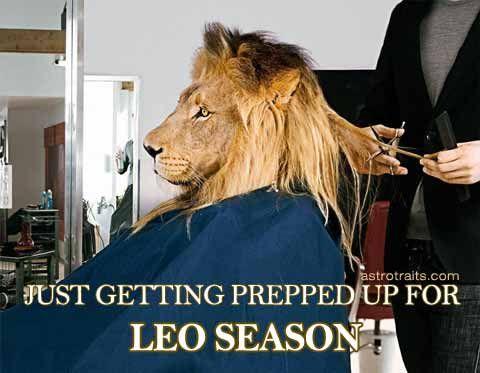 The Best Leo Season Memes Top 13 Leo Season Memes In 2020 Leo Season Memes Leo Season Funny Lion
