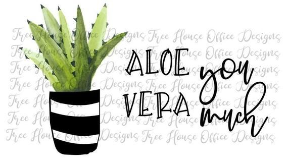 Download Funny Cactus SVG/PNG/JPEG | Punny Cactus | Succulent Clip ...