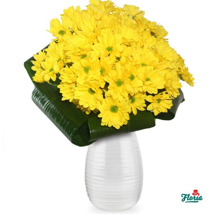 Buchet de 19 Crizanteme Galbene