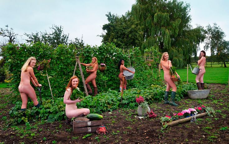 Нагое дело: 9благотворительных календарей в жанре ню — Жёны британских военнослужащих, студенты-ветеринары, регбисты-геи, православные верующие и другие герои, фотографирующиеся обнажёнными для благотворительных календарей.