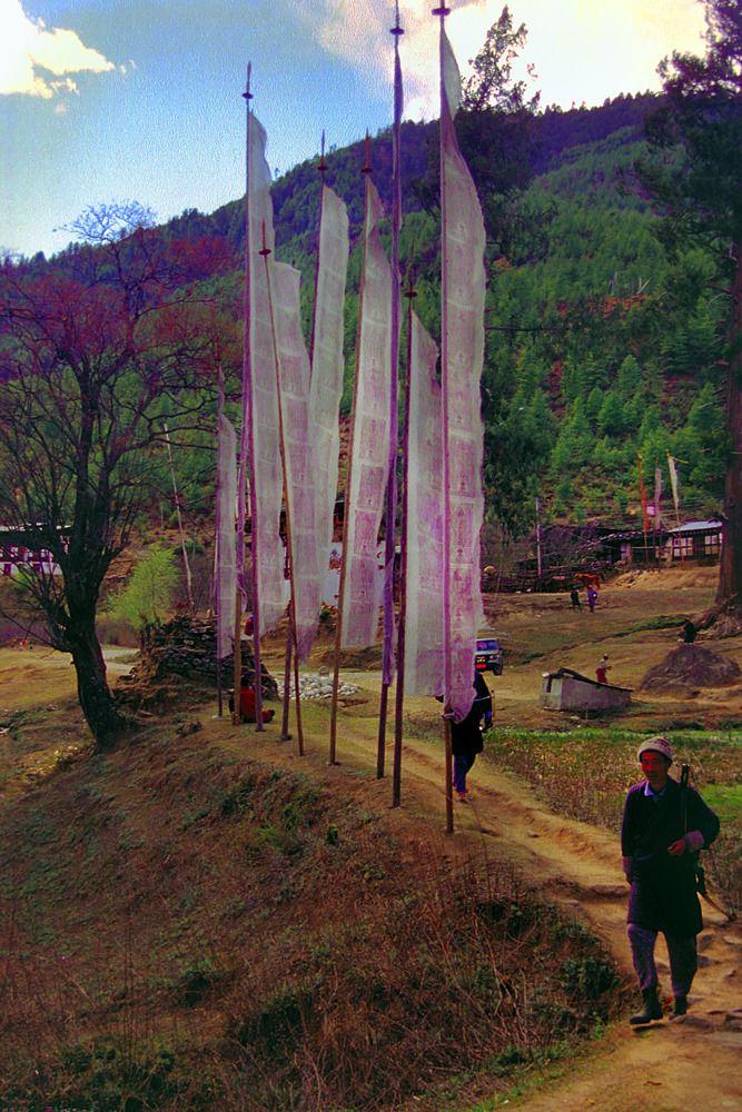 Prayer flags . Bhutan