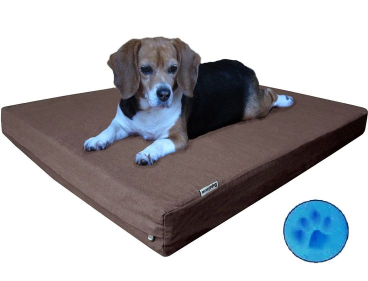 Heavy Duty Memory Foam Dog Bed With Washable Brown Denim Cover And  Waterproof Liner Extra Replacement Pet Bed Case, Medium Large ^^ Additional  Details At ...