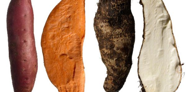 Yam vs Sweet Potato: the truth is what you've been calling a yam is most likely a sweet potato. So what's the difference between yams and sweet potatoes?
