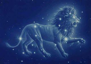 Reflexionando con Herminia: El león