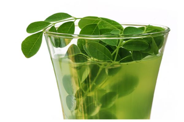 For decades, MORINGA AND GINGER have been used to combat multiple diseases and have always yielded excellent results, recent studies have shown that if these two ingredients are used in combination and in the right portions, their effect is much faster and more effective. PROPERTIES OF MORINGA: The Moringa is also known as the tree...