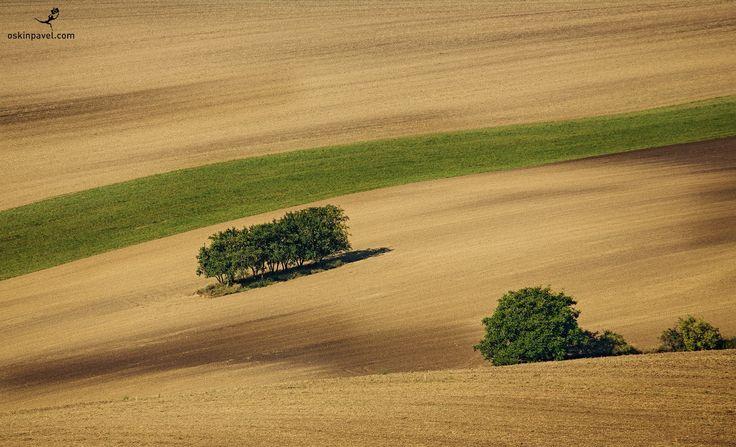 #185. Moravia's lines. Czechia. - http://www.oskinpavel.com/