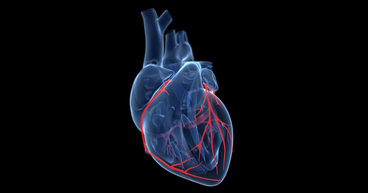Google Aims a $50 Million Moonshot at Curing Heart Disease | WIRED