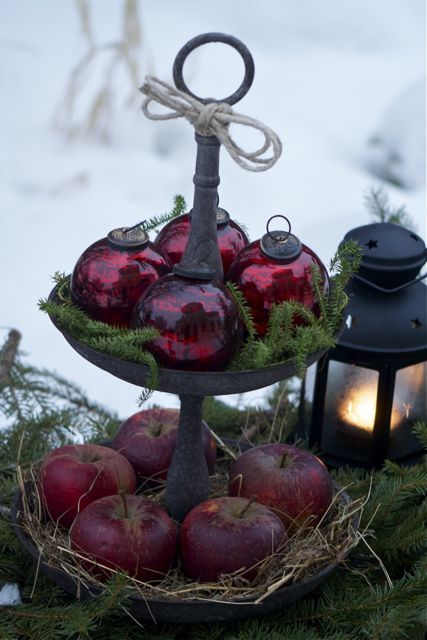Outdoor Christmas Garden Inspiration Apples <3 Kerst Tuin Inspiratie Appels #Fonteyn