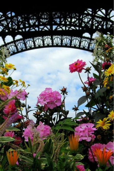 Paris: Flowers Gardens, Spring Flowers, Tours Eiffel, Buckets Lists, Gorgeous Flowers, French Flowers/Garden, Eiffel Towers, Inspiration Boards, La Tours