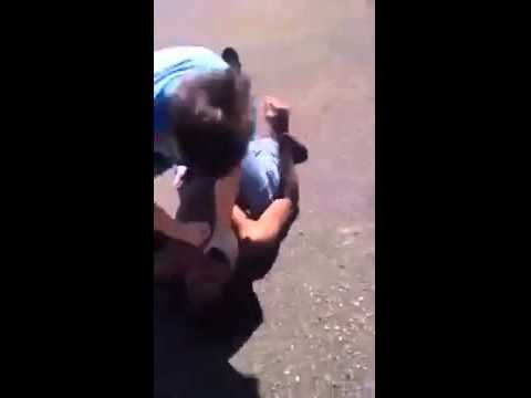 Visit for more: 4funvideos.net Like this video? COMMENT / SHARE / LIKE! funny, funnyvideos, funny videos, funnypictures, funny pictures, true stories, pranks, funny pranks, social pranks, prank, social prank, prank goes wrong