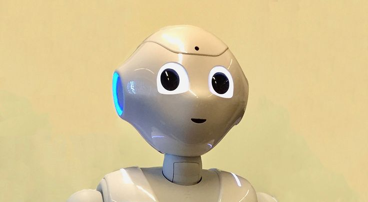 UTS unleashes team to deliver social robot software system   UTS News Room