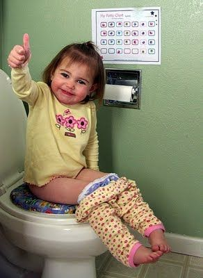 This site has some great information about potty training and scheduling toddlers.