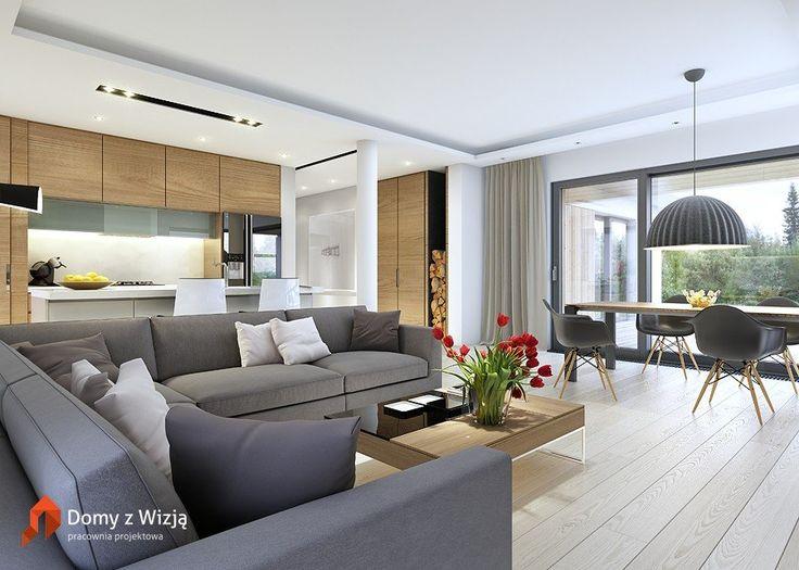 Domy z wizją - Dom Rodzinny1 – Architectu