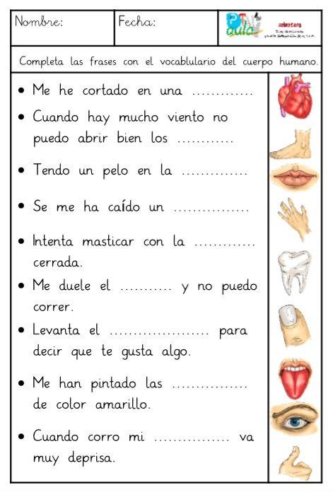 Comprensión lectora de frases con el vocabulario del cuerpo humano.