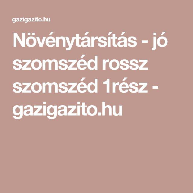 Növénytársítás - jó szomszéd rossz szomszéd 1rész - gazigazito.hu