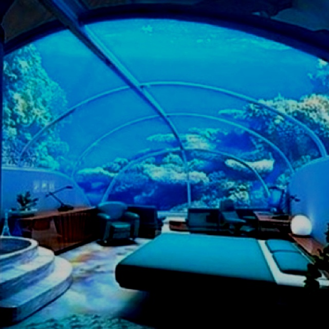 54 best marine aquariums images on pinterest aquarium for Fish hotel tank