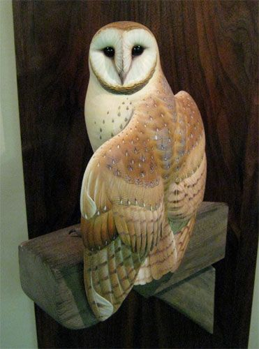 Barn owl carving by josh brewer the parliament