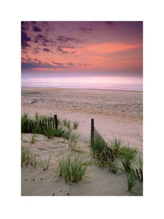 Sunrise, Folly Beach, South Carolina. Love Folly Beach! Dolphins, the ocean and