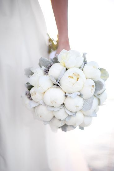 This bouquet of silvery lamb's ear and white peonies is stunning in its simplicity.