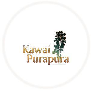 Home | Yoga Retreat Centre | Auckland | Kawai Purapura NZ
