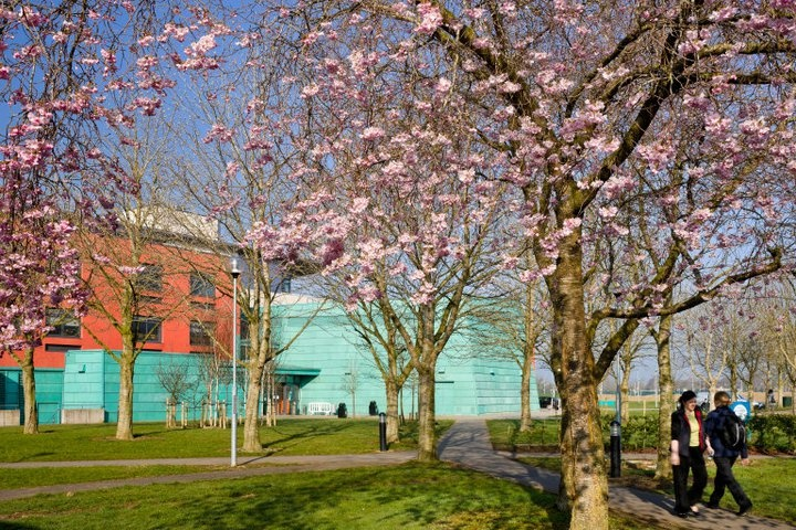 National University of Ireland, Maynooth North Campus in Spring