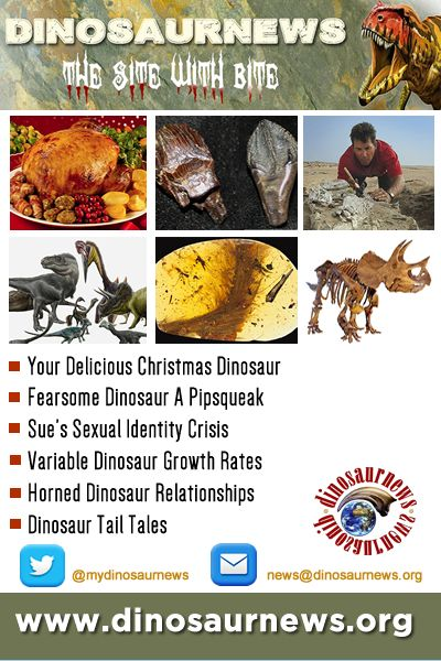 This Week - Your Delicious Christmas Dinosaur * Fearsome Dinosaur A Pipsqueak * Sue's Sexual Identity Crisis * Variable Dinosaur Growth Rates * Horned Dinosaur Relationships * Dinosaur Tail Tales http://www.dinosaurnews.org #dinosaurs #news #dinosaurnews #fossils